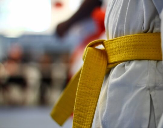 LSS Maryland-Lean Six Sigma Yellow Belt